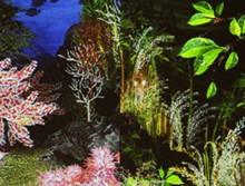 이화여대 자연사박물관 | 자연의색